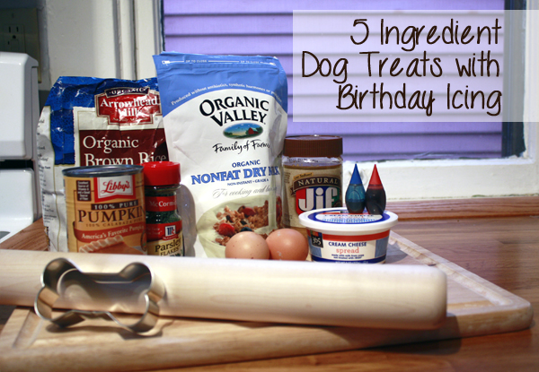 5 ingredient dog treats with icing