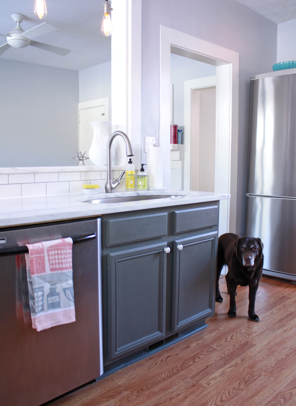 Small Kitchen Makeover Chocolate Lab