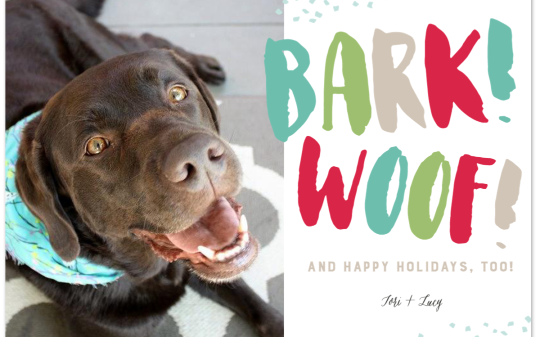 Picking the Perfect Holiday Card for Dogs