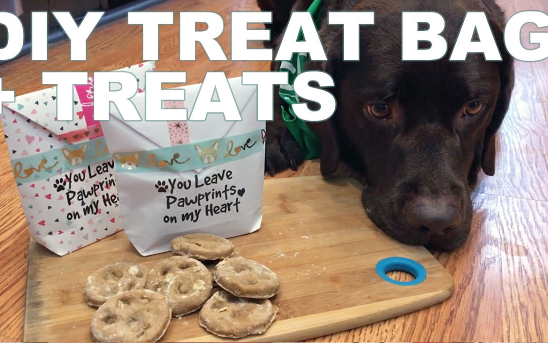 Lucy Loves DIY: February Treat Bag + Paw Print Treats Recipe