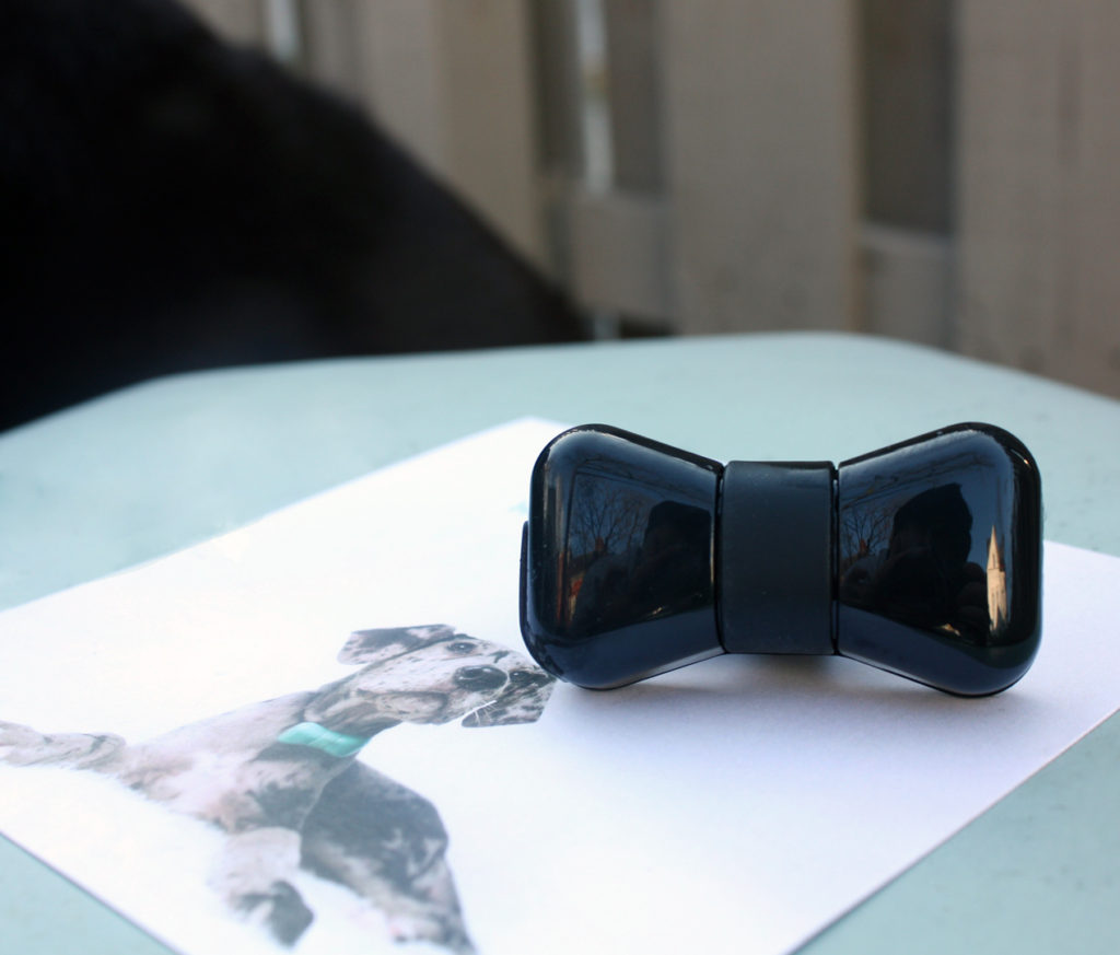 WonderWoof Dog Activity Tracker from The Grommet