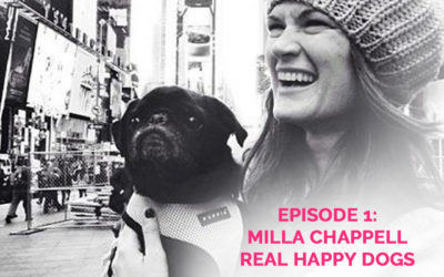 Podcast Episode 1: Milla Chappell of Real Happy Dogs
