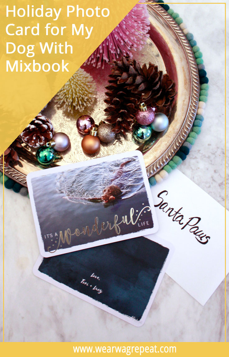 Creating My Dog's Holiday Card with Mixbook