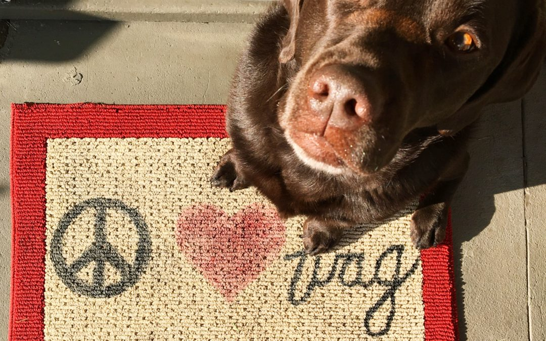 Peace Love Dog Stencilled Welcome Mat Tutorial