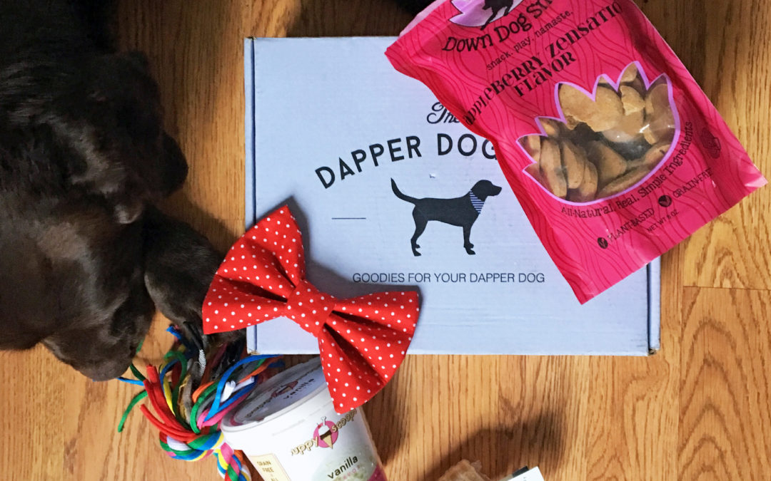Unboxing Video: February Dapper Dog Box