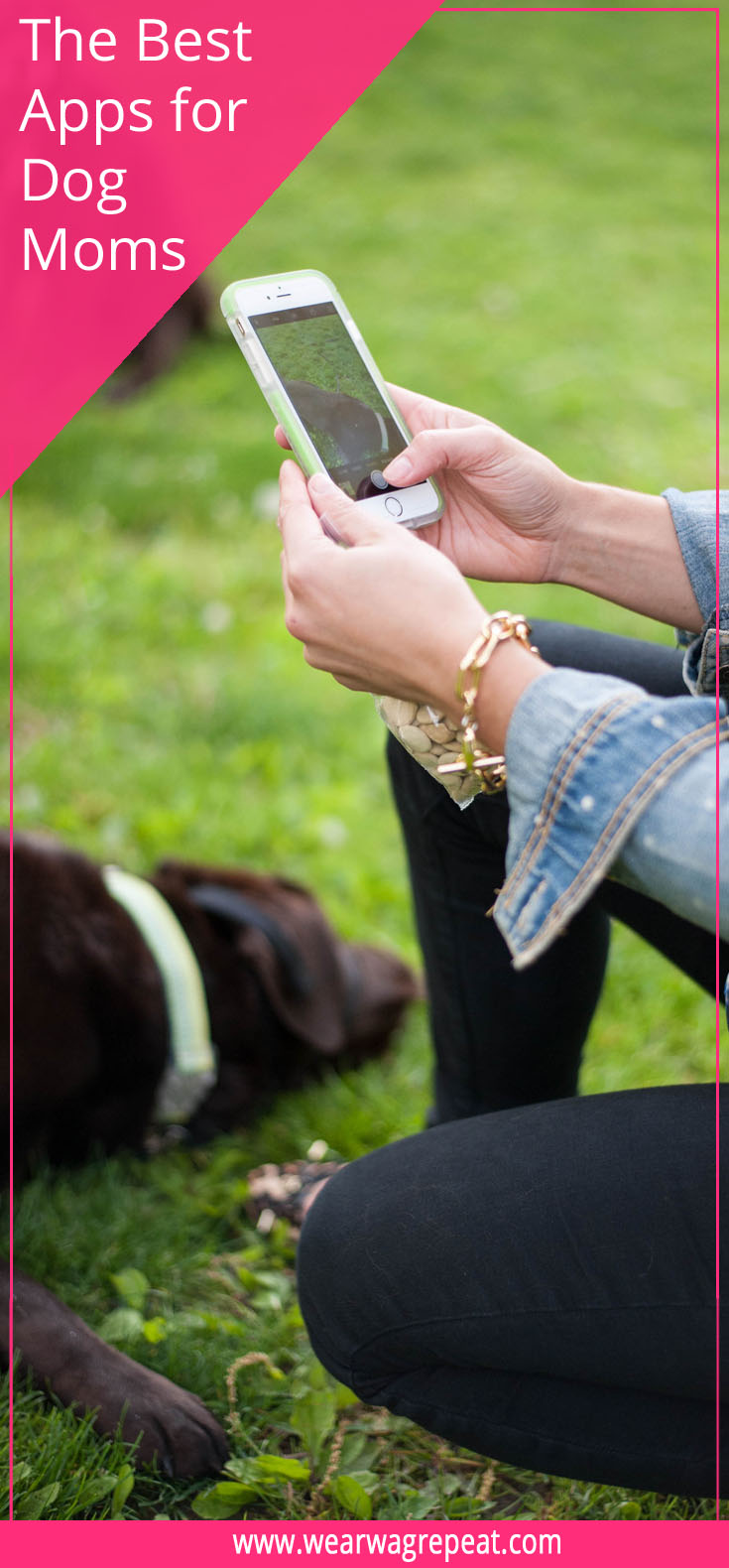 The Best Apps for Dog Moms