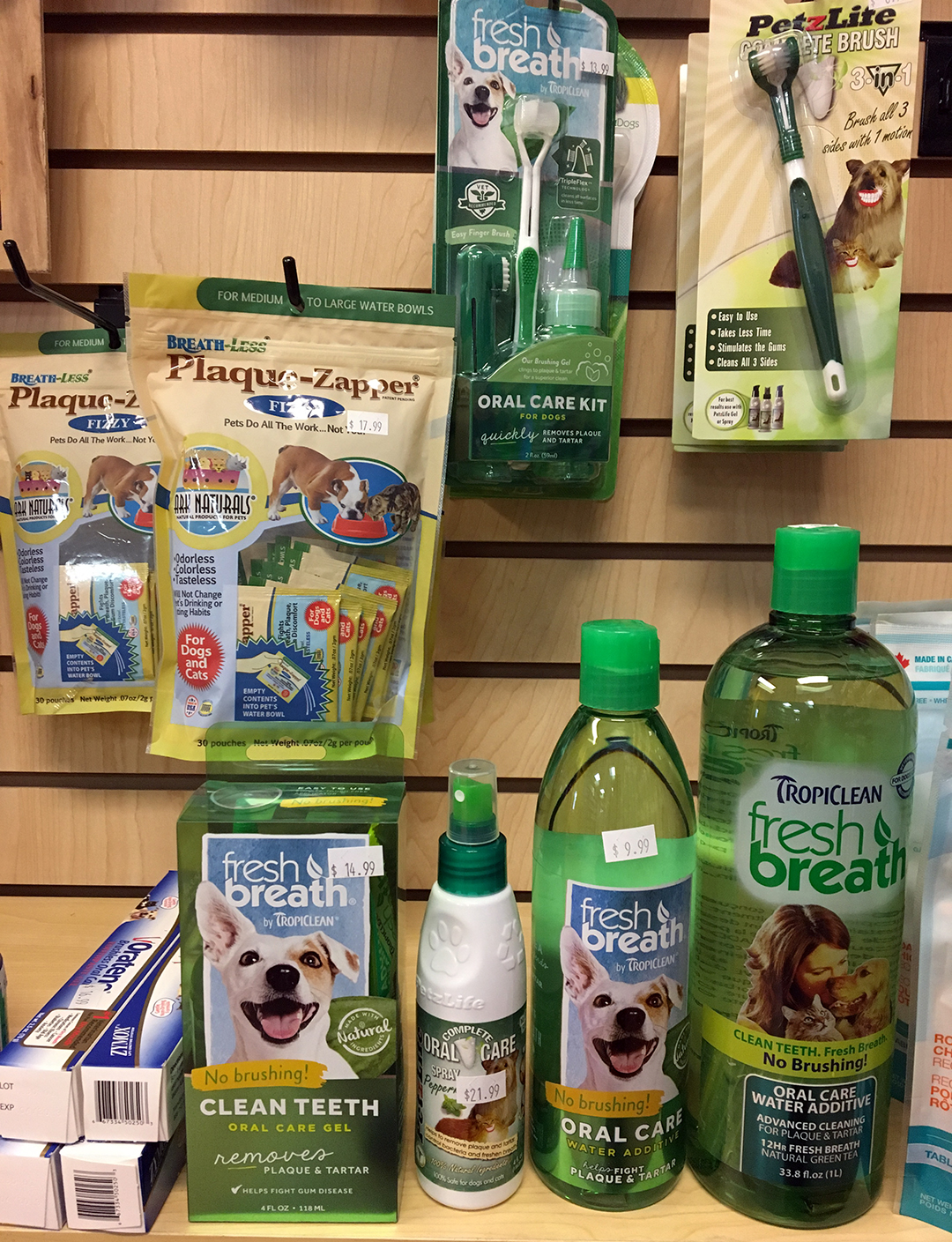 How a Dog Mom Does Pet Dental Health Month