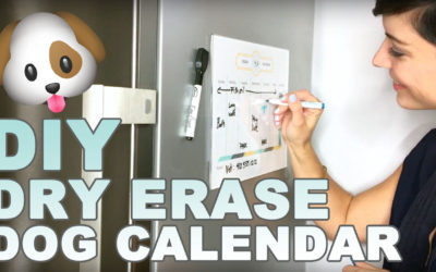 DIY Dog Calendar To Keep Track of Walks and More