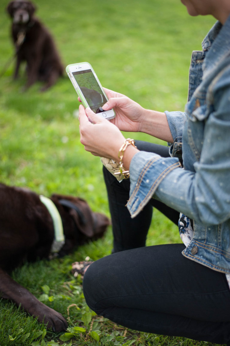 Best Apps for Dog Moms