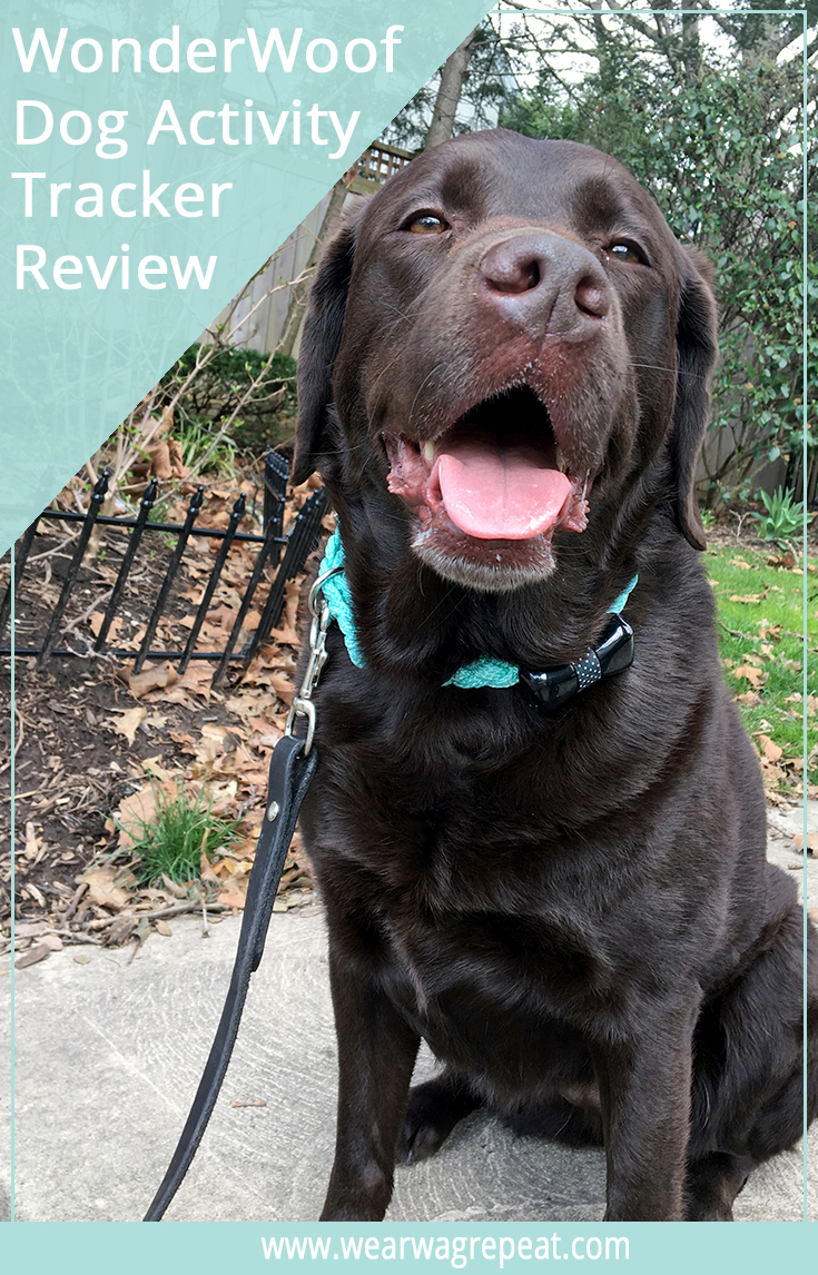 WonderWoof Dog Activity Tracker Review