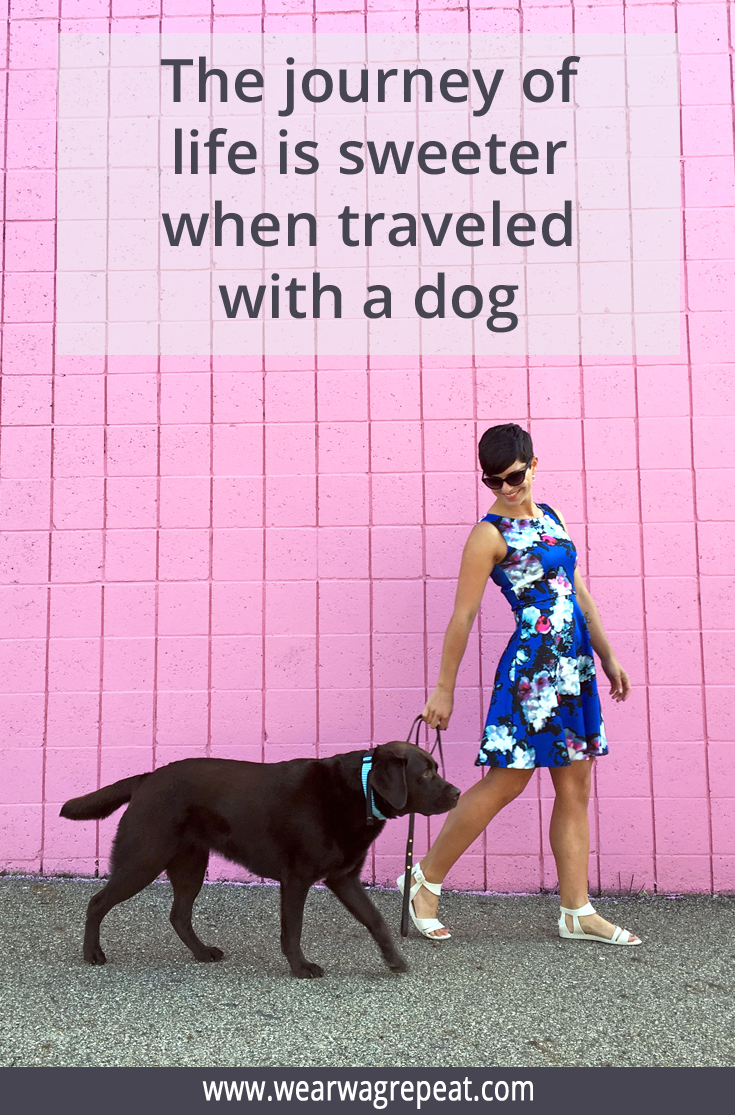Sweeter with a Dog