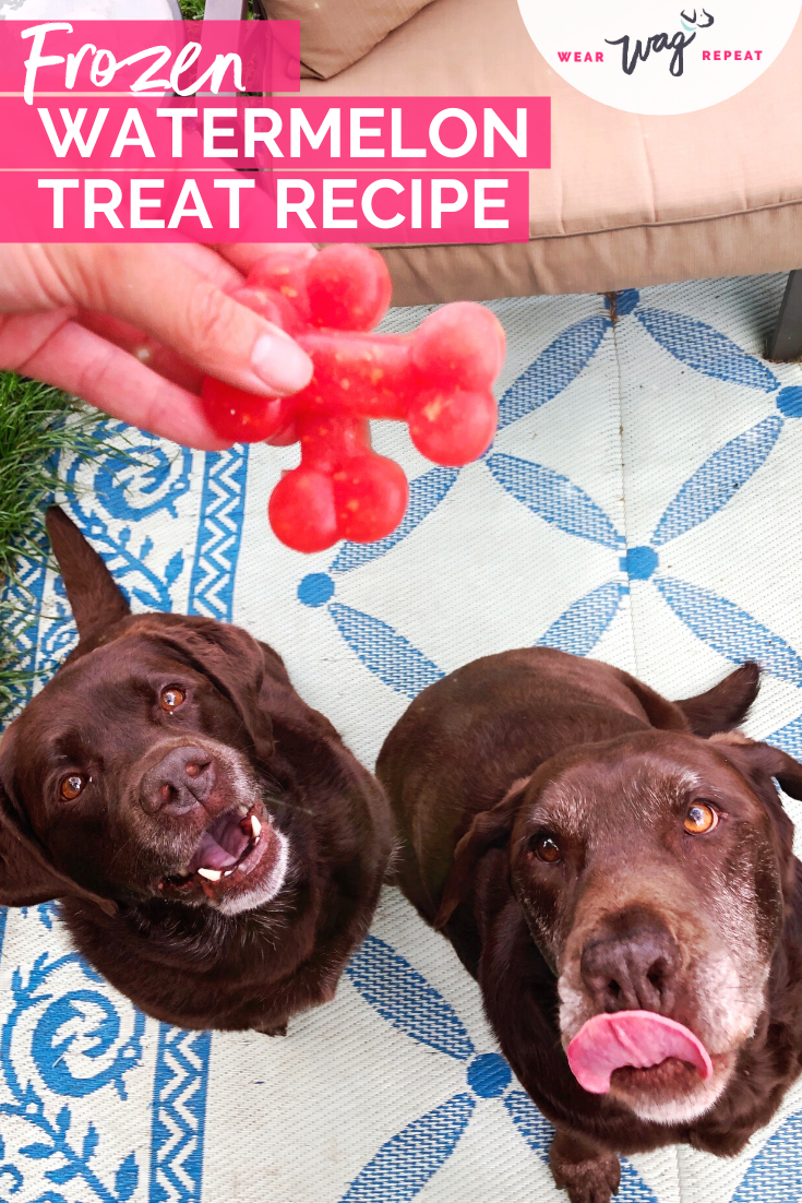 How to make frozen watermelon dog treats: easy recipe