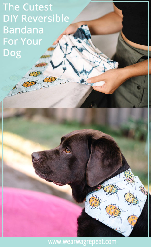 diy reversible dog bandana
