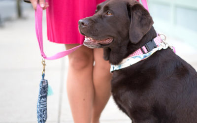 My Favorite Stylish Dog Mom Accessories Right Now