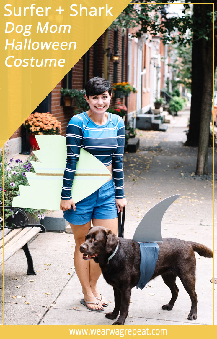Halloween Costume Ideas For Dogs And Owners