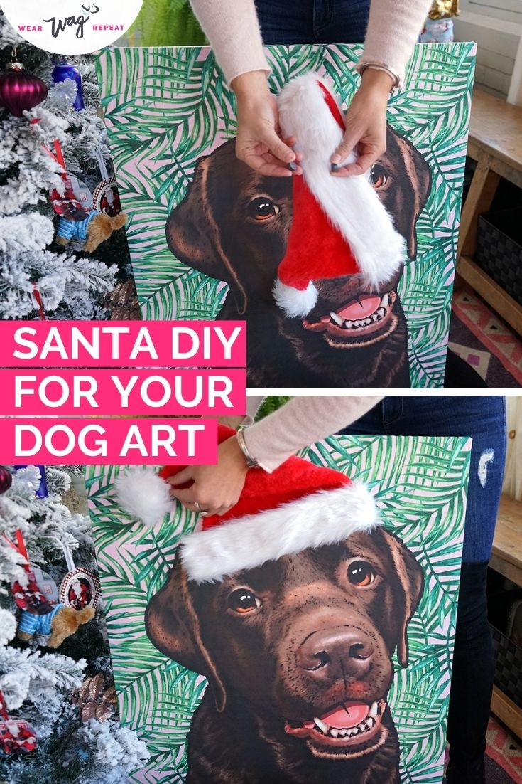 pop your pup santa DIY