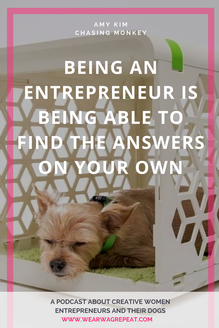 Wear Wag Repeat Podcast Episode 17: Amy Kim of Chasing Monkey and PAWD