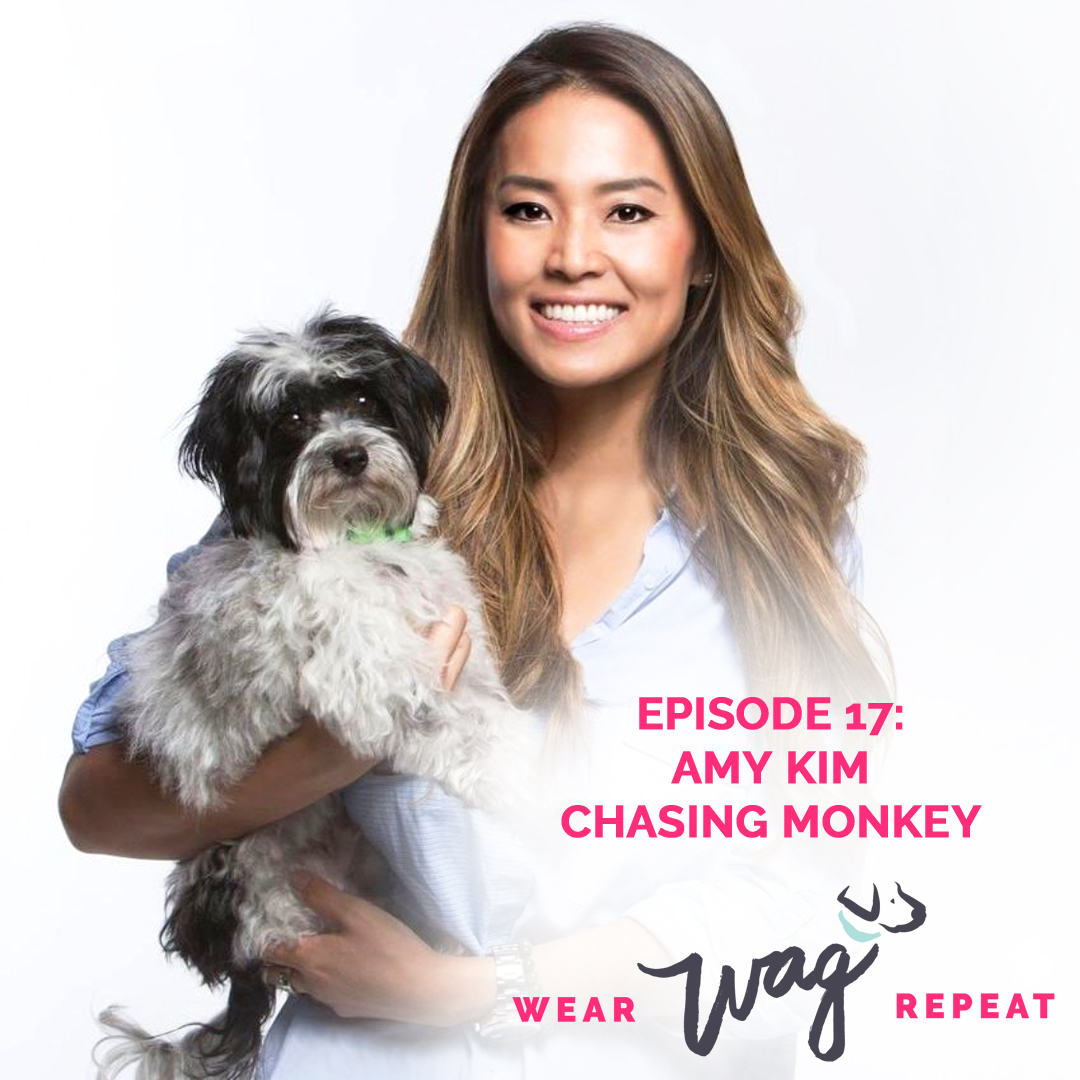 Wear Wag Repeat Podcast Episode 17: Amy Kim of Chasing Monkey