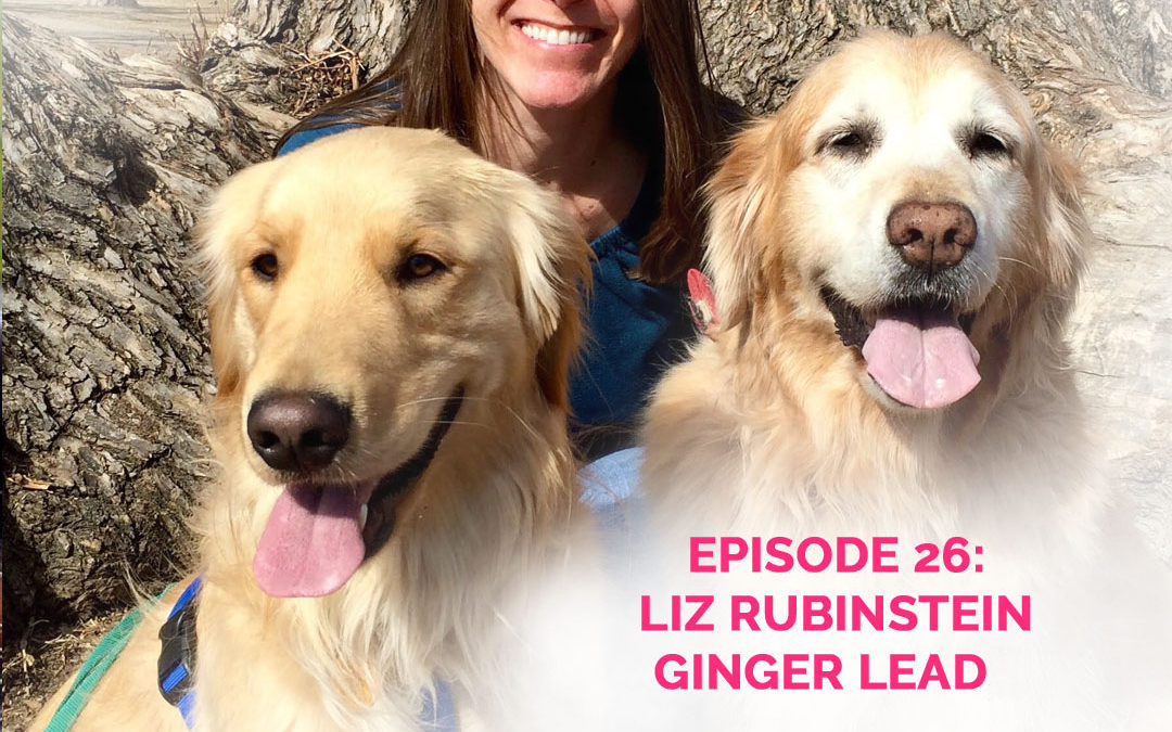 Podcast Episode 26: Liz Rubinstein of GingerLead