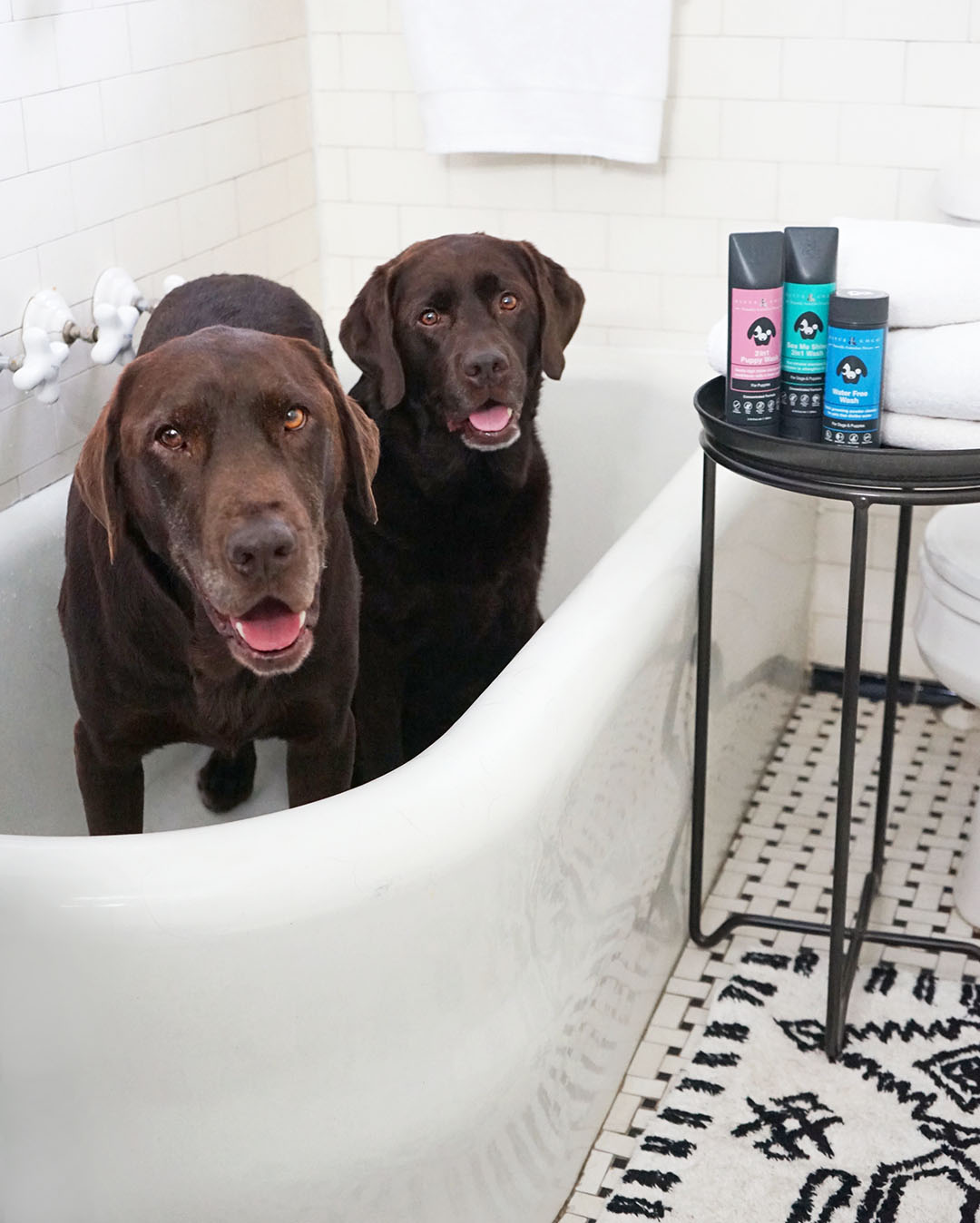 Jumping In The Bath With All-Natural Rufus & Coco