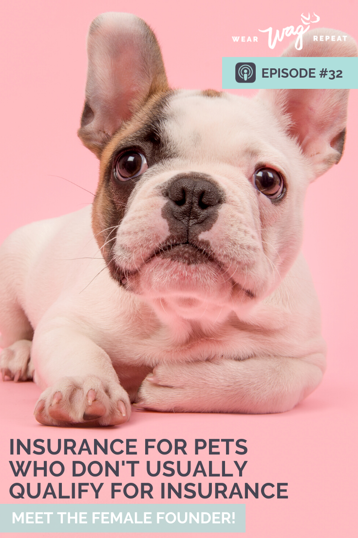 insurance for dogs with pre existing conditions