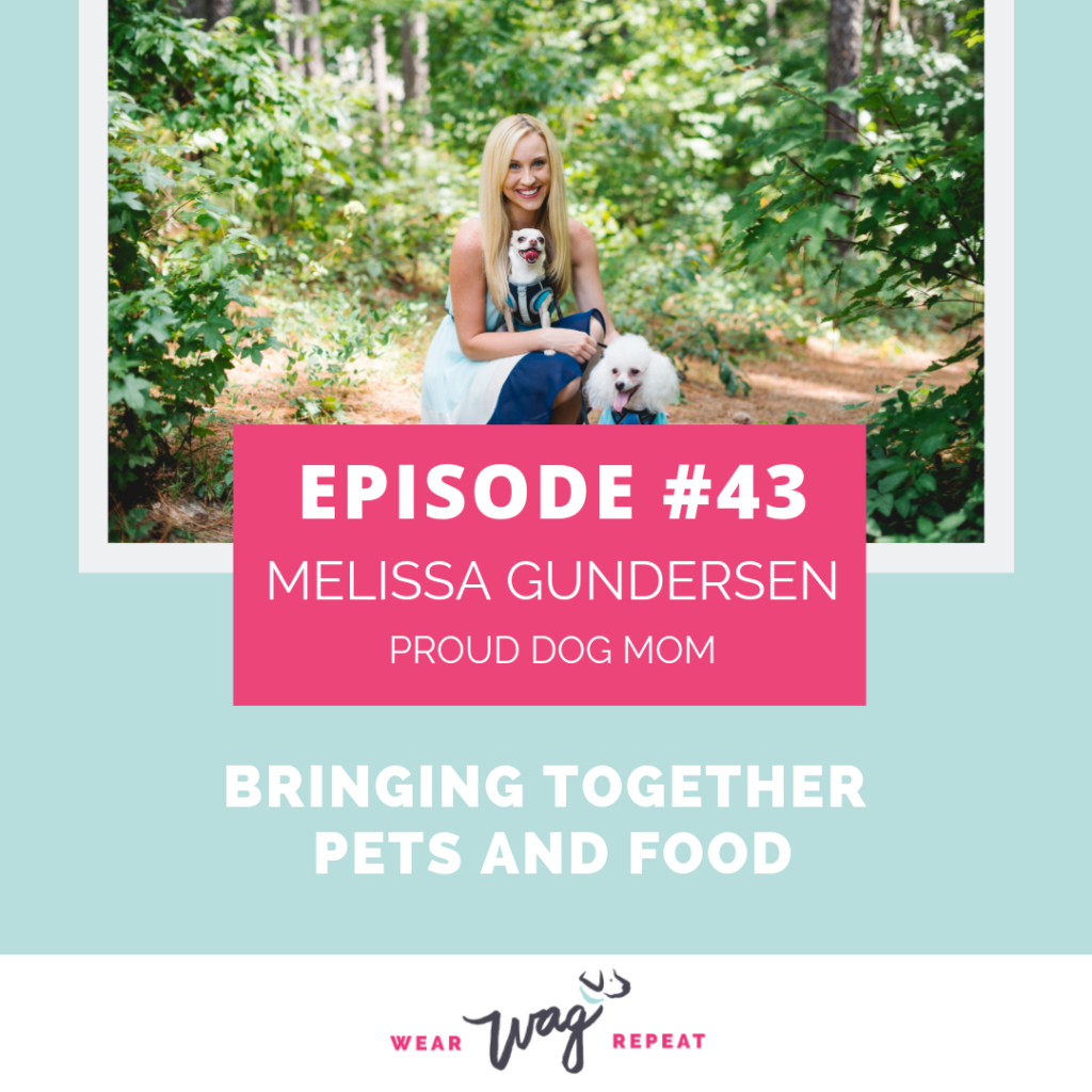 PodcastEpisode43BringingTogetherPetsAndFoodwithMelissaGundersonofProudDogMom
