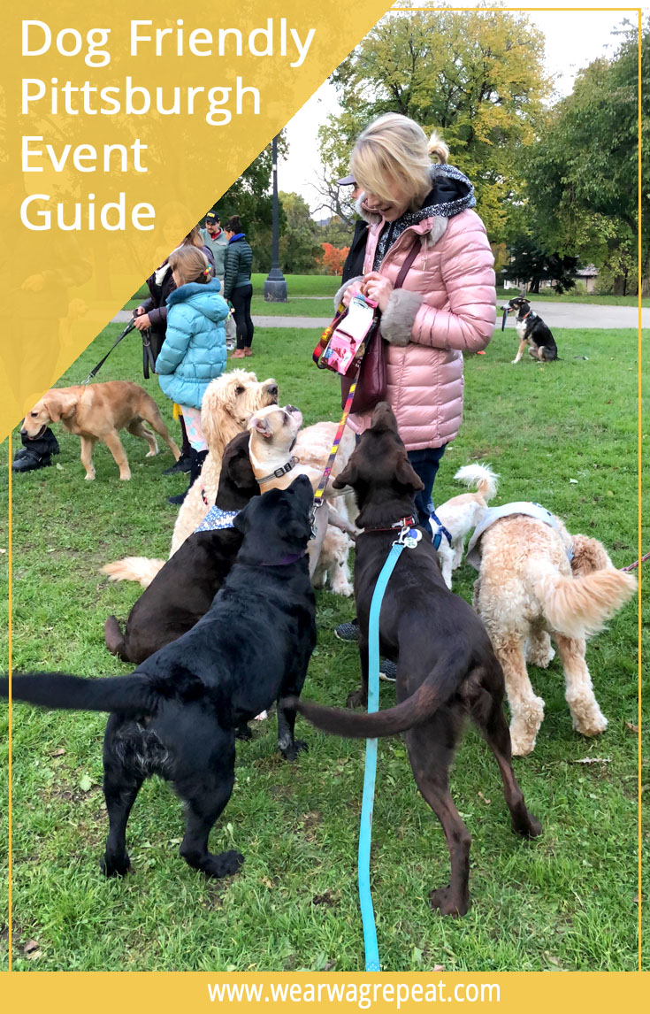 2019 Dog Friendly Pittsburgh Event Guide