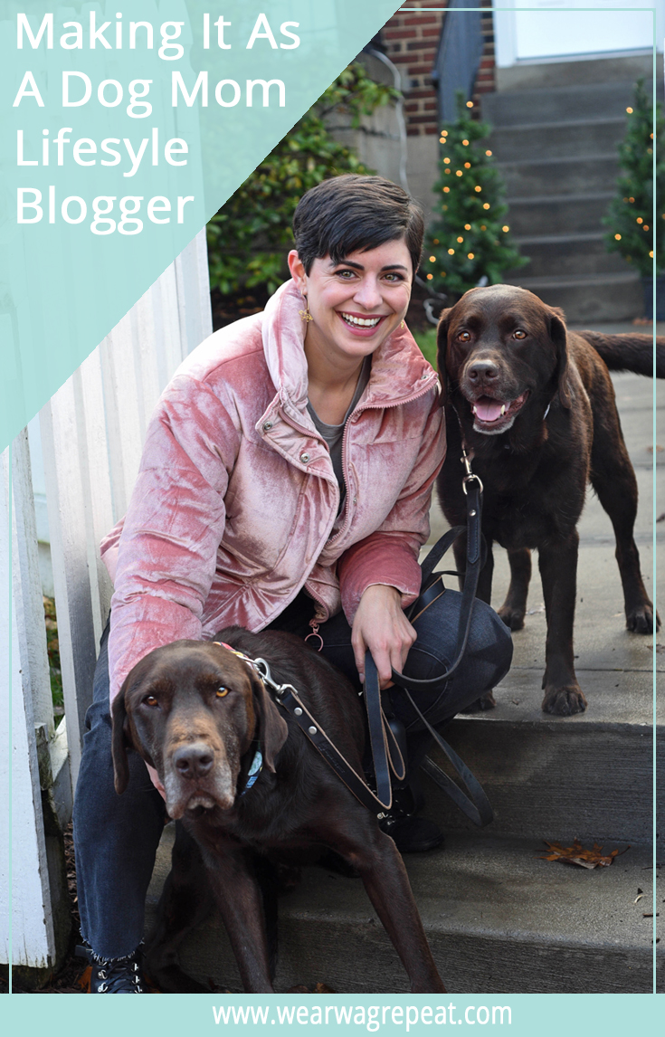 9th Annual Pet Blogger Challenge