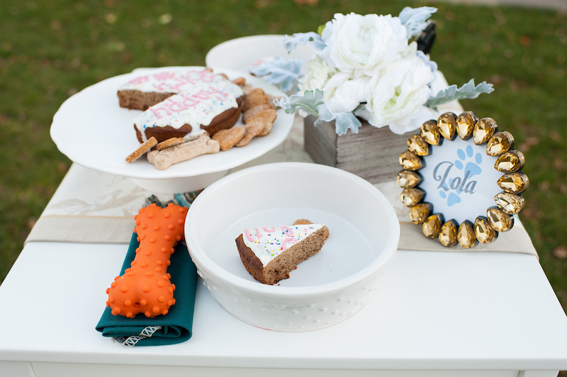 Sophisticated Dog Birthday Party Styled Shoot