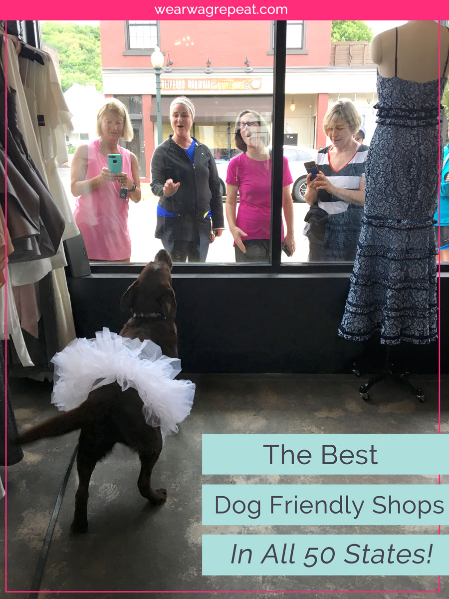 70 Of The Best Dog Friendly Shops Across America ⋆ Wear Wag