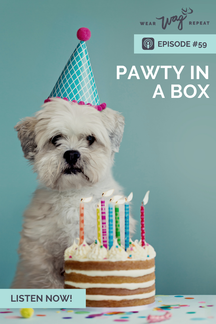 pawty in a box dog birthday
