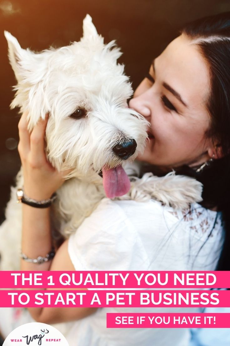 what you need to what you need to start a successful pet business