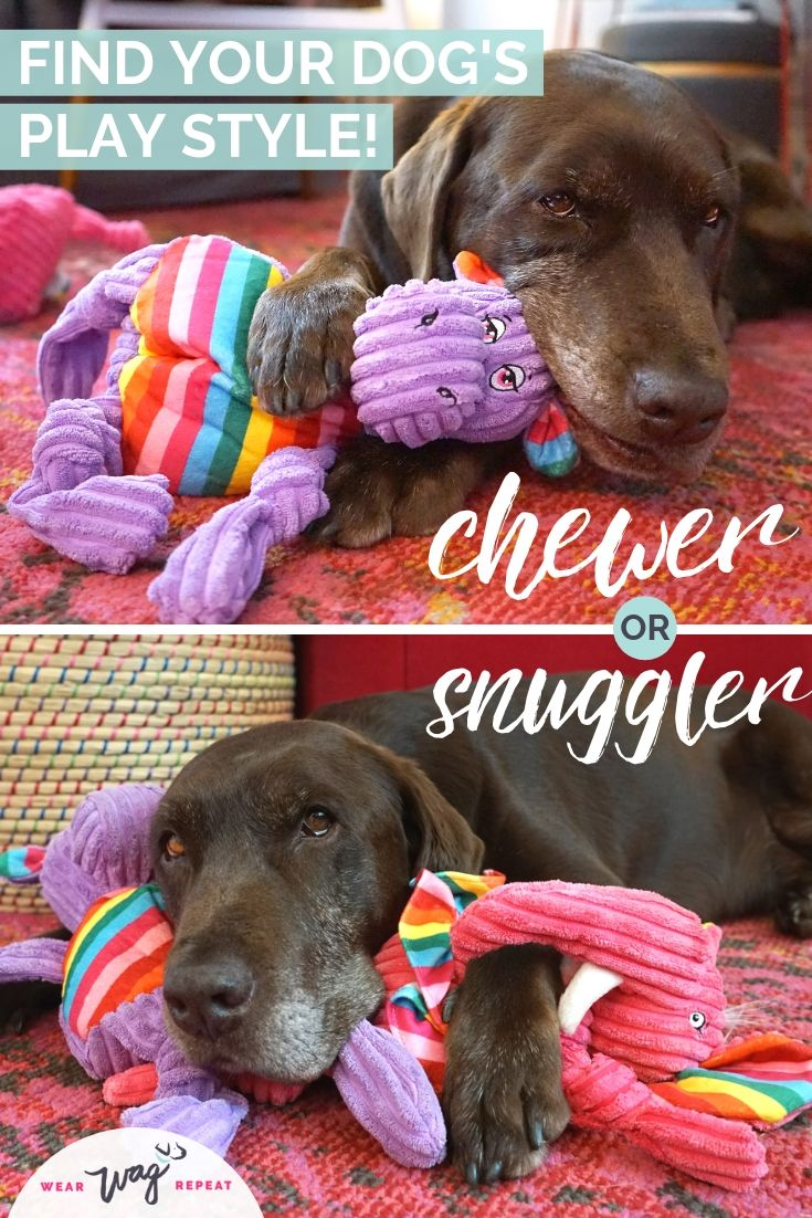 Plush toys for tough chewers and snugglers