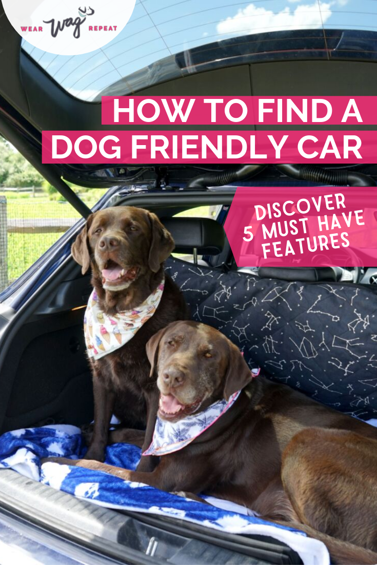Finding a Dog Friendly Car on Autotrader
