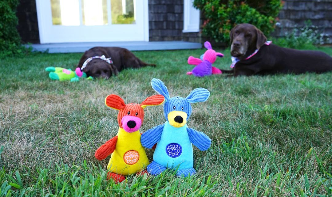YogaHounds plush dog toys from HuggleHounds