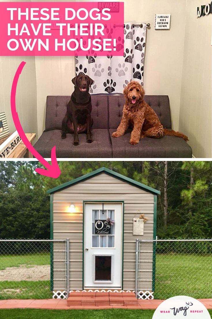 You have to see this custom dog house