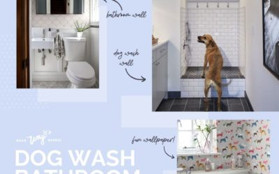 Dog Wash and Dog Inspired Mudroom Moodboard