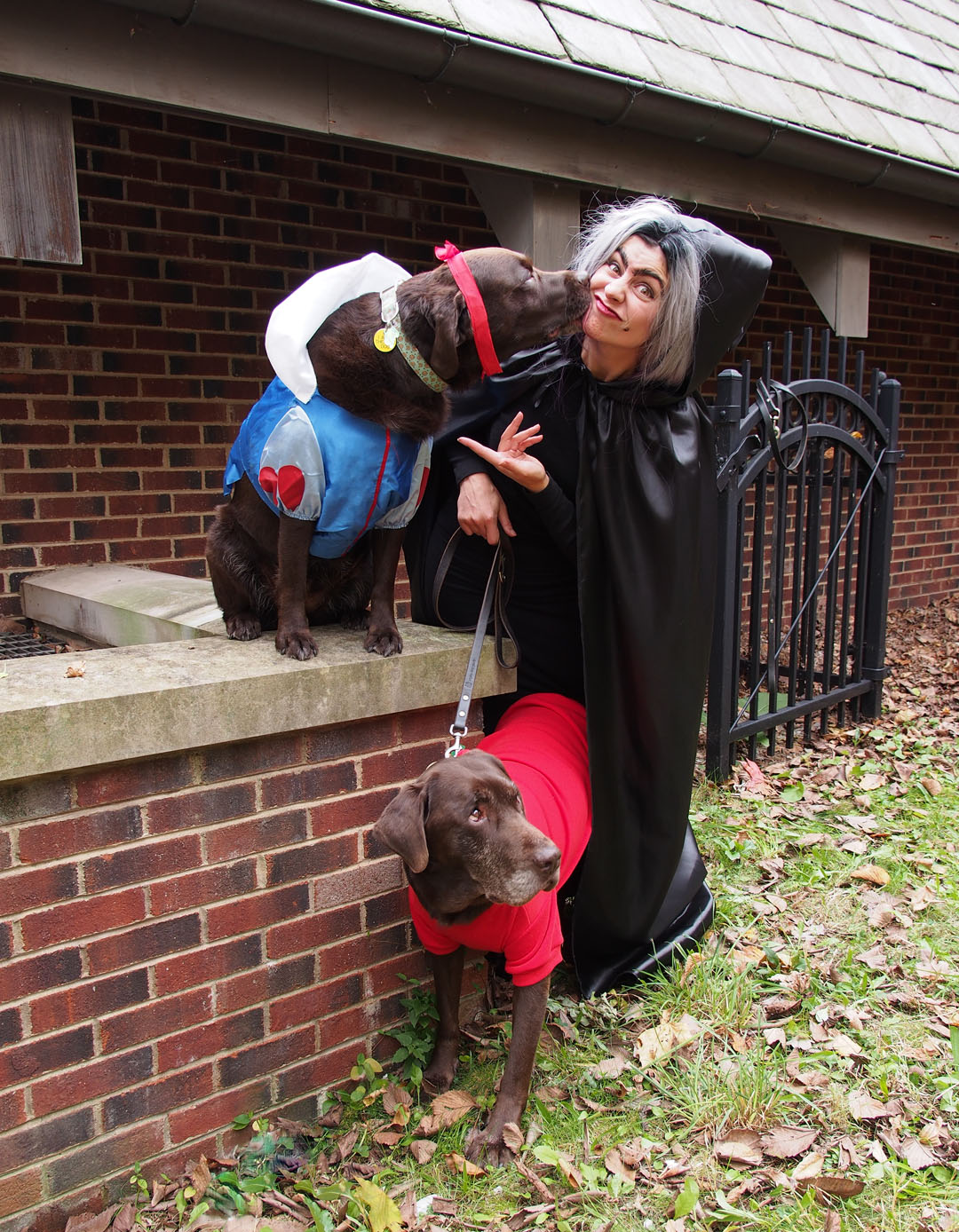 Dog Halloween Costume Idea: Snow White and Poison Apple