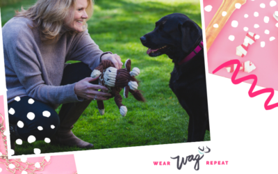 Podcast Episode 87: Creating High Quality and Stylish Dog Toys for Today's Pet Parents