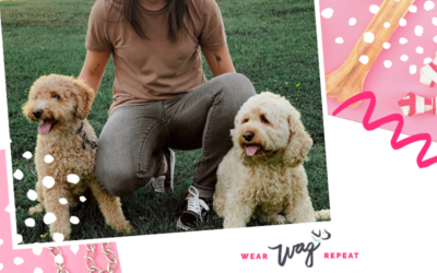 Podcast Episode 90: Exchange Gifts with Your Instagram Dog Friends with Mariana and Allison of Gift Spawt