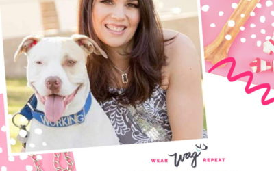Podcast Episode 95: Helping Dogs Find a Forever Home with Marika Meeks of IncredibullStella