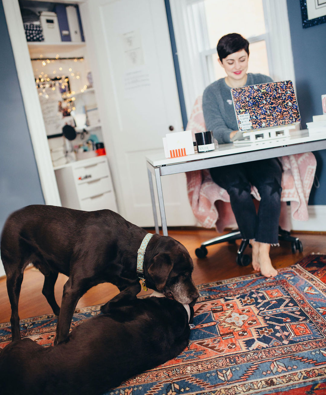 Work with your dog as a blogger or influencer