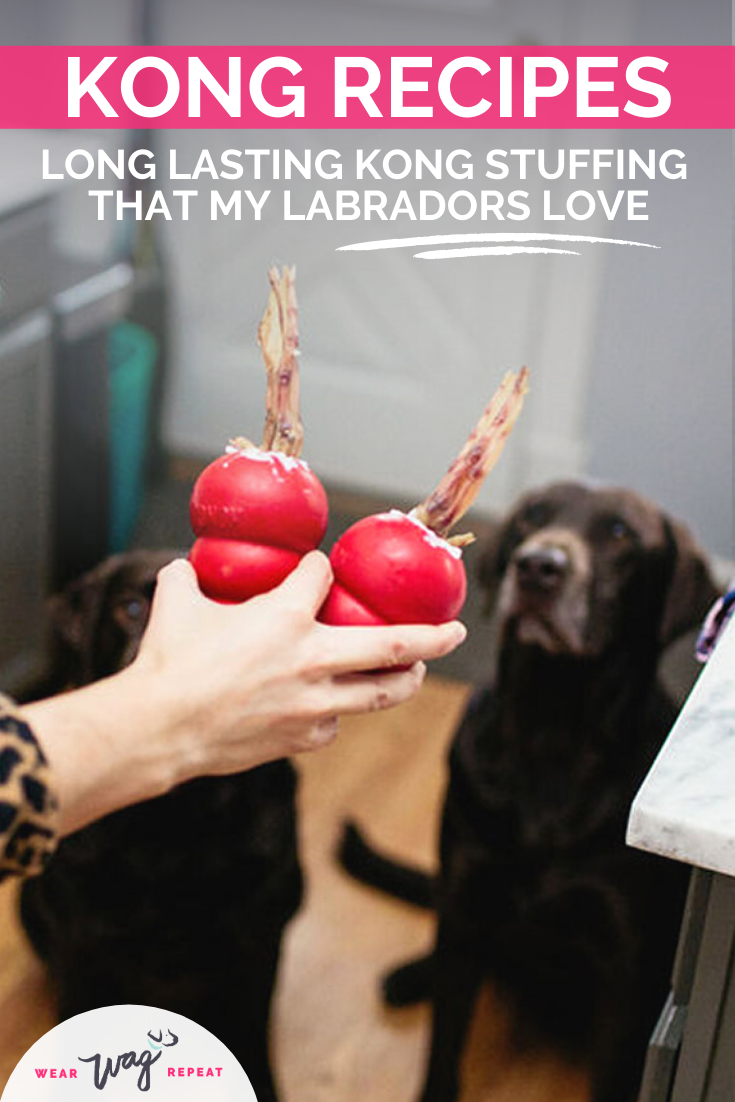 Kong recipes my labradors love