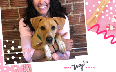 Podcast Episode 101: Inventing New Ways to Clean Your Dog's Teeth with Emily Stein
