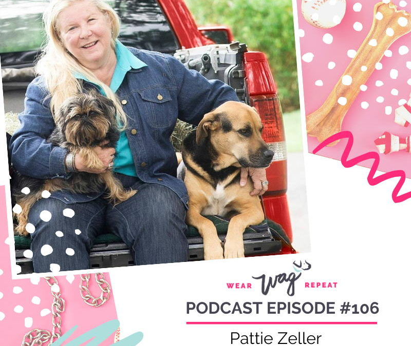 Podcast Episode 106: Find Your Greater Purpose in the Pet Industry with Pattie Zeller of Animal Connection