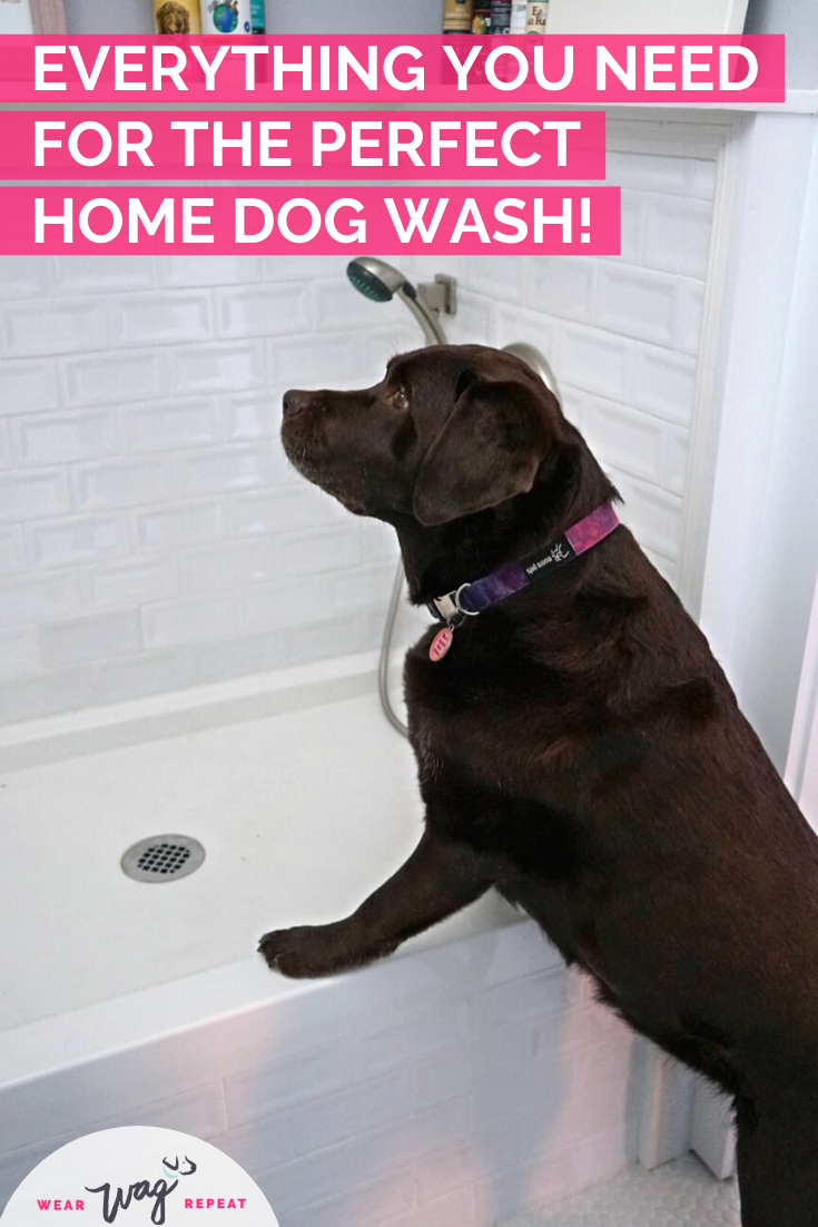 everything for the perfect home dog wash