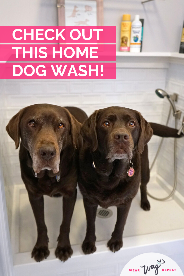 check out this home dog wash