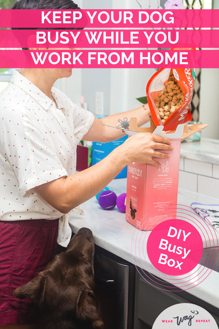DIY Busy Box enrichment dog toy