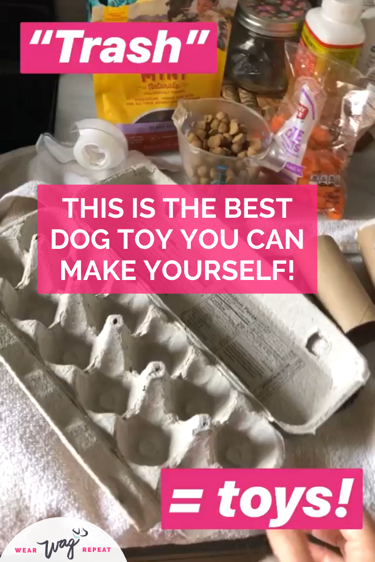 dog enrichment toy made at home