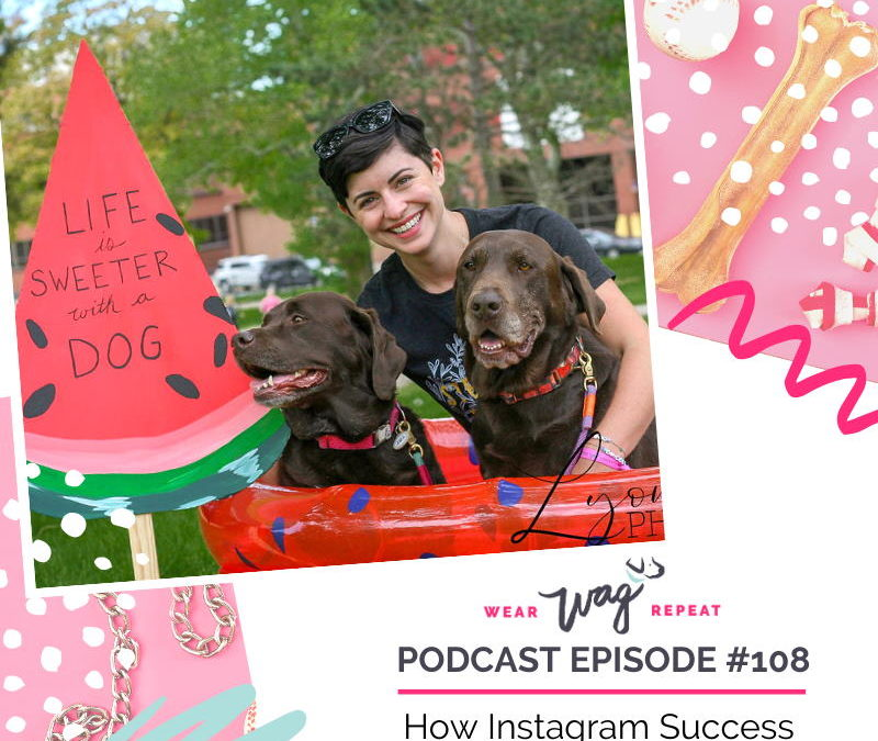 Podcast Episode 108: Why My Dog's Instagram is About More Than Followers